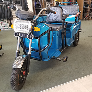 Crusader Ebike Rear View